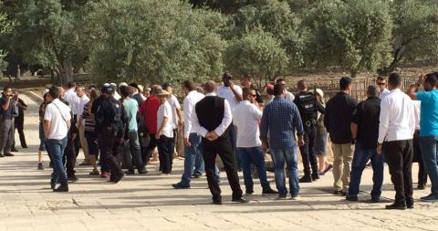 عشرات المحتلين يقتحمون المسجد الأقصى 1466581615.jpg?itok=g_9AXfmL