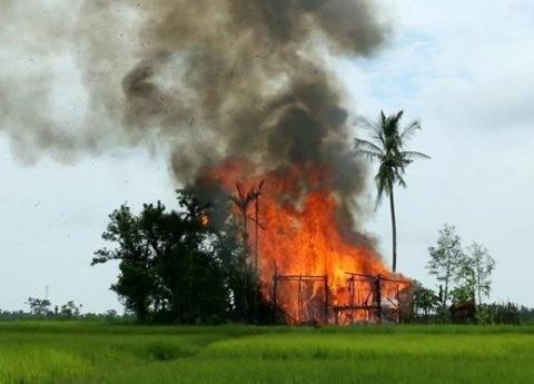 ميانمار يحرق الروهينغيا أويلقيها النهر 1_266.jpg?itok=RvCP1lXg