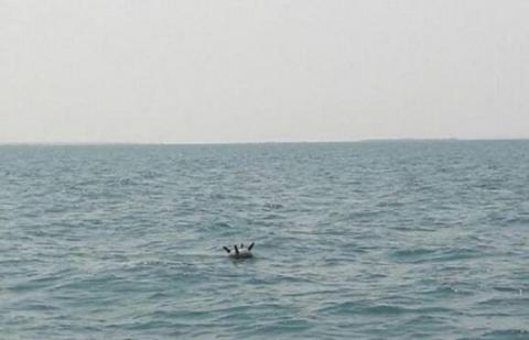 البحرية اليمنية تفكك شبكة ألغام 7_160.jpg?itok=m7ZehL-u